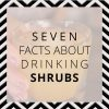7 Facts About Drinking Shrubs